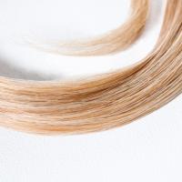 Hair Drug Testing: FAQ