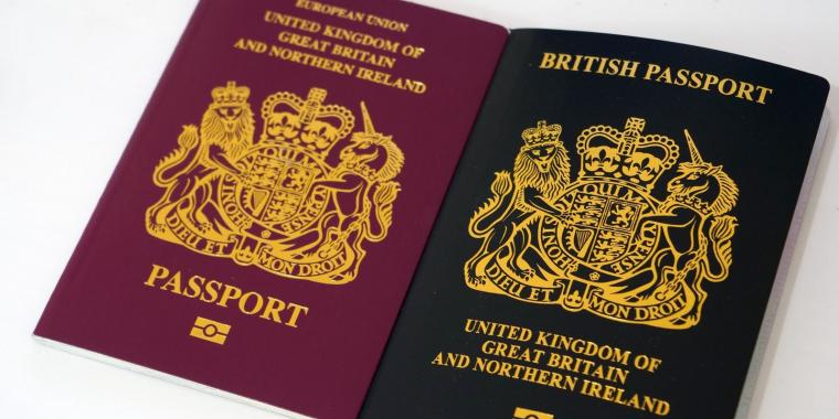 Immigration DNA Testing for a British Passport: how it works