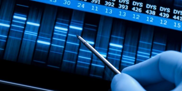 How many DNA markers do we test for?